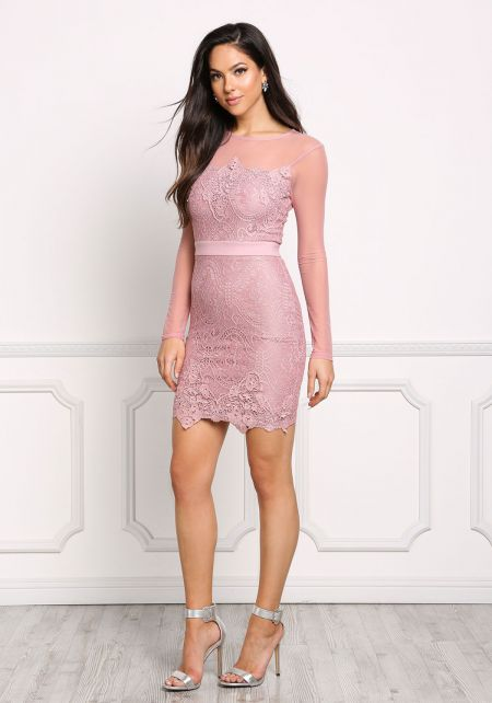Mauve Lace Embroidered Mesh Trim Bodycon Dress