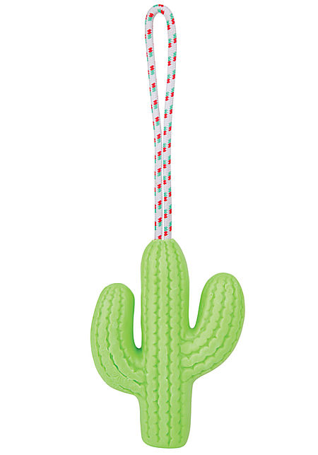 Soap On A Rope Cactus