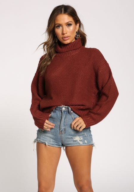 Brick Turtleneck Sweater Top