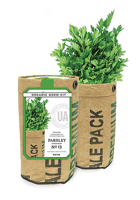 Urban Agriculture Co. Parsley Organic Grow Kit