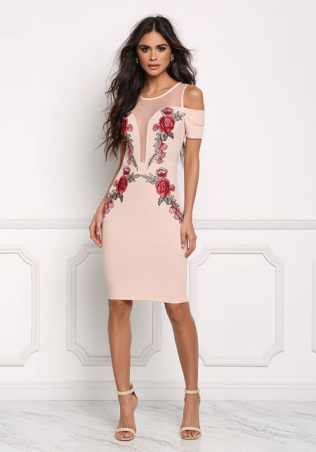 Blush Rose Applique Plunge Mesh Bodycon Dress