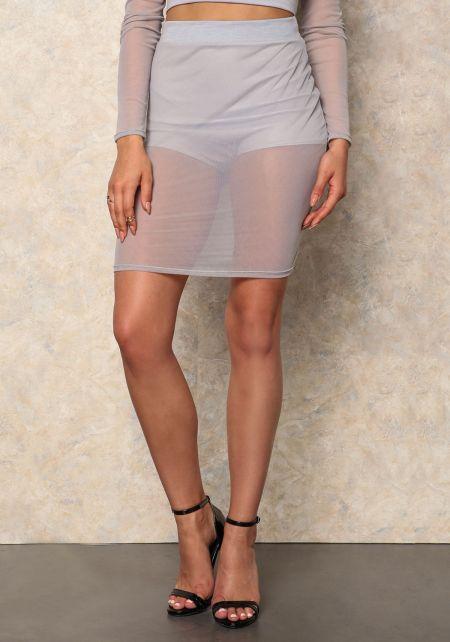 Silver High Waist Mesh Skirt