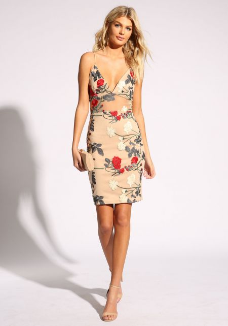 Taupe Rose Embroidered Tulle Dress